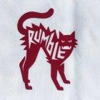 Cat-IMG_3831