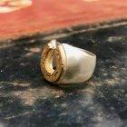 Horseshoe_Ring2